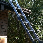 STUCK HALFWAY UP THE LADDER?